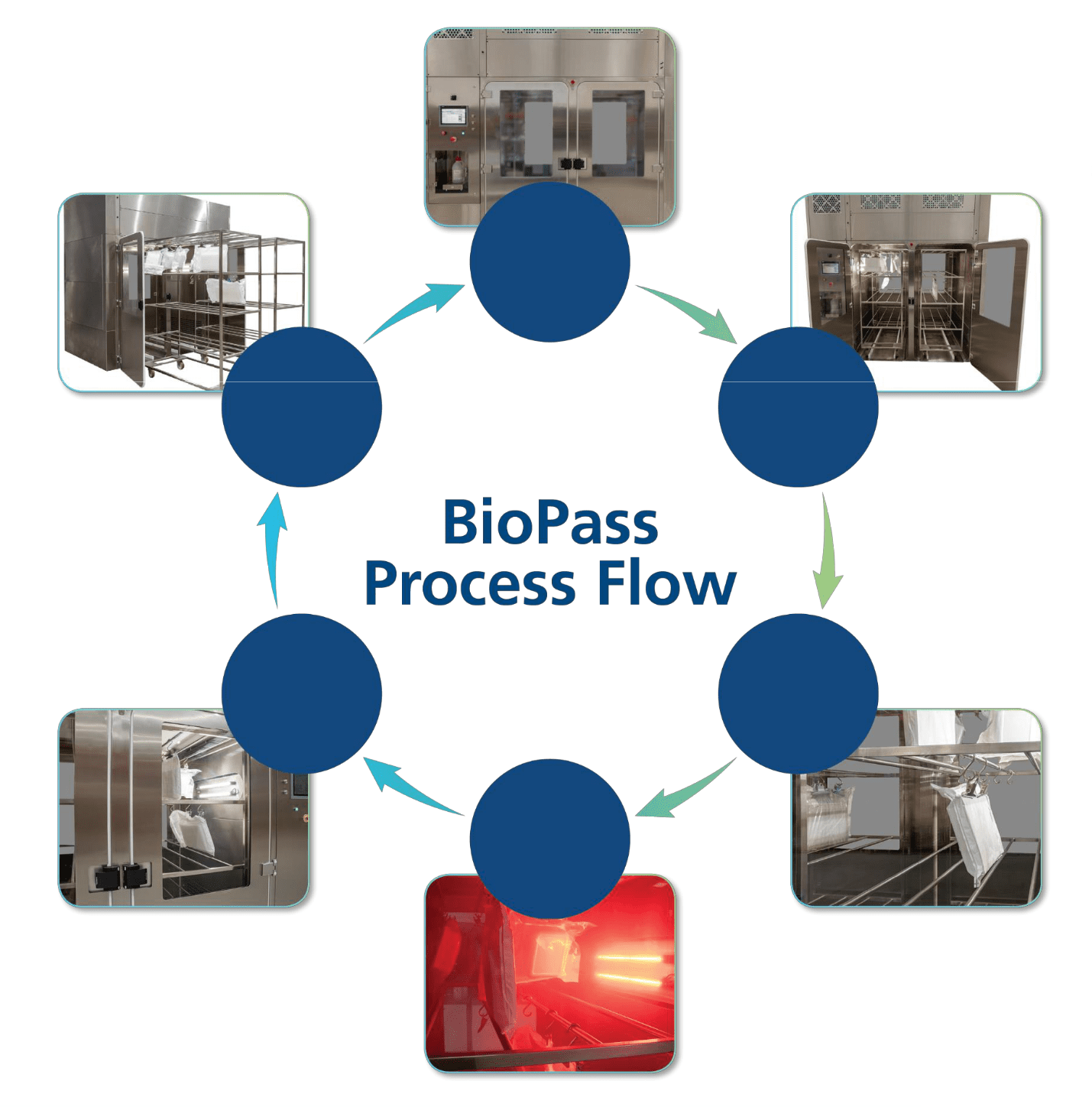 biopass-process-flow