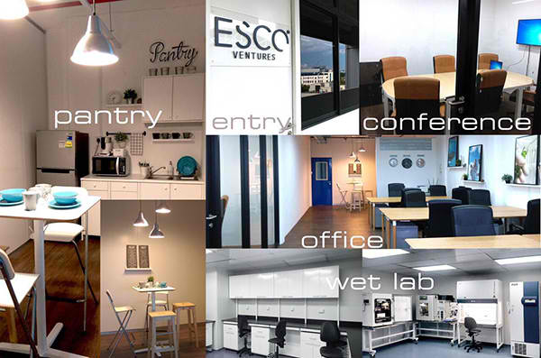 Esco Ventures Labs, ready for incubatee companies