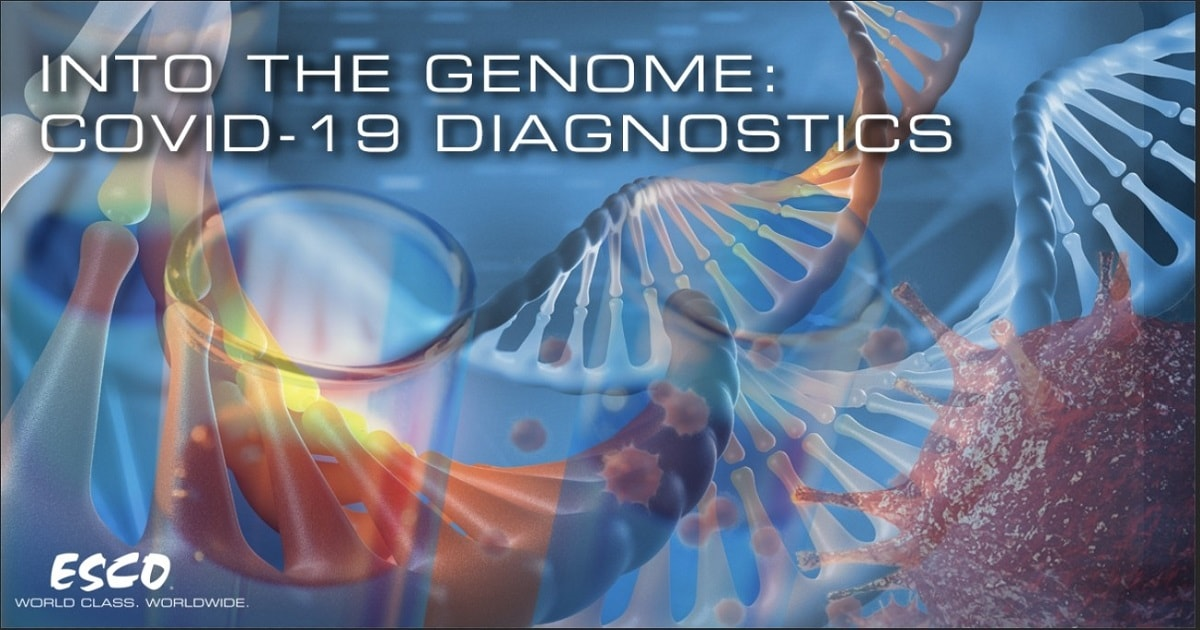 Into the Genome: COVID-19 Diagnostics