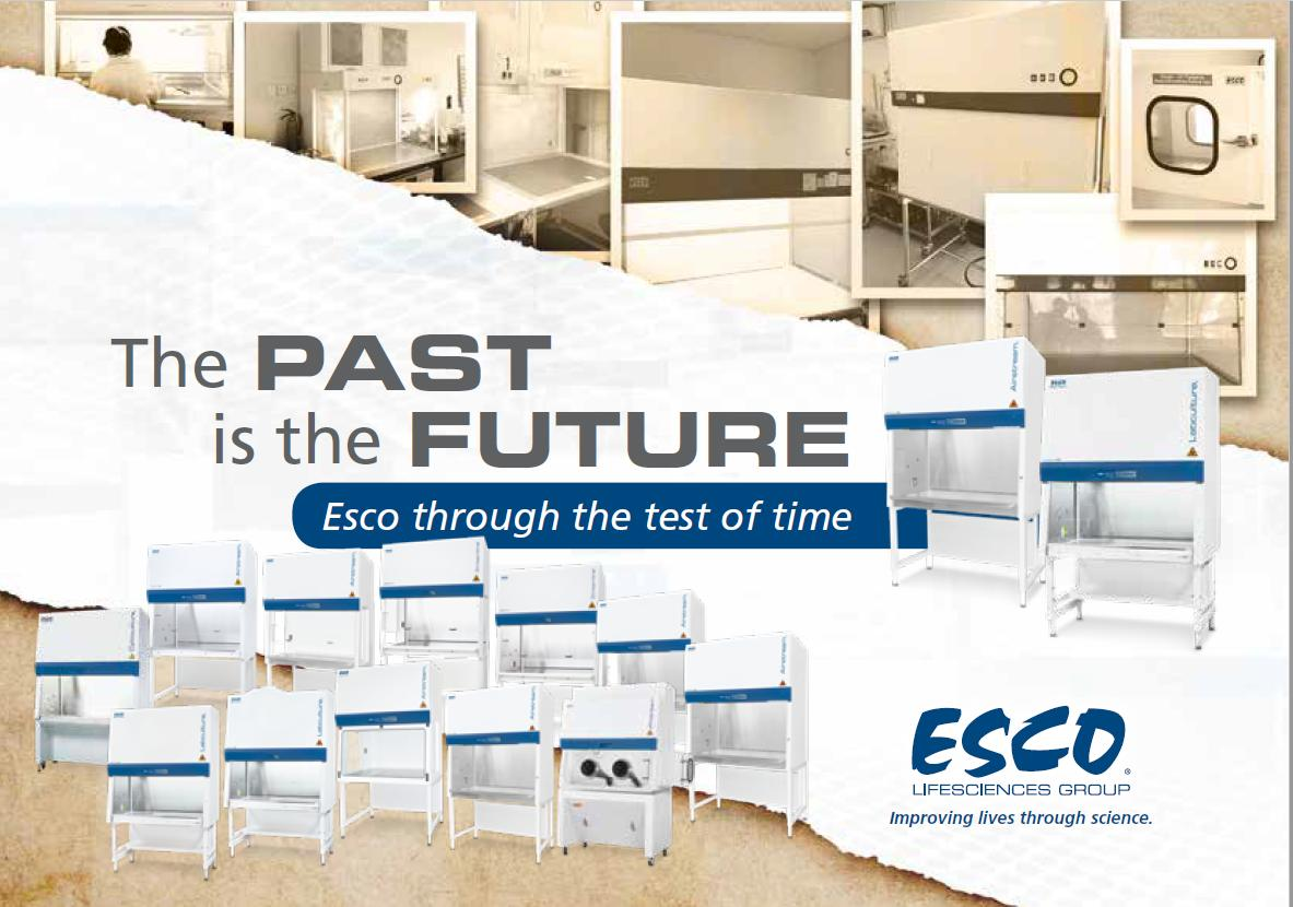 The Past is the Future, Esco over the years.